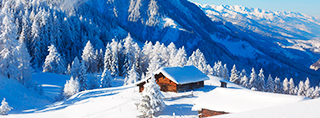 Chalets and cottages for winter holidays