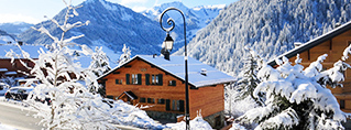 Holiday homes for ski holidays in France