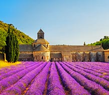 Provence - holiday homes